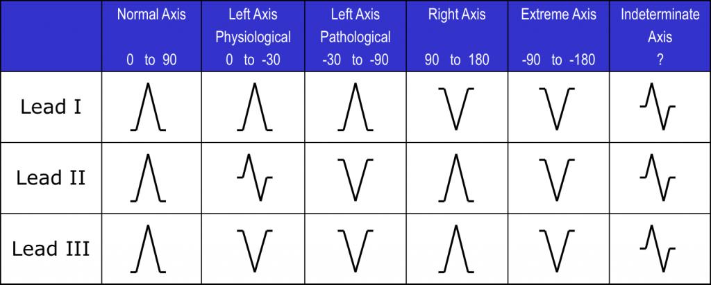 rapid-axis-1024x411